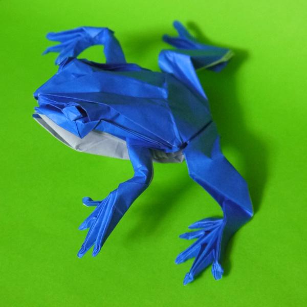 すべての折り紙 折り紙 カエル リアル : 折り紙 ぴょんぴょんガエル ...